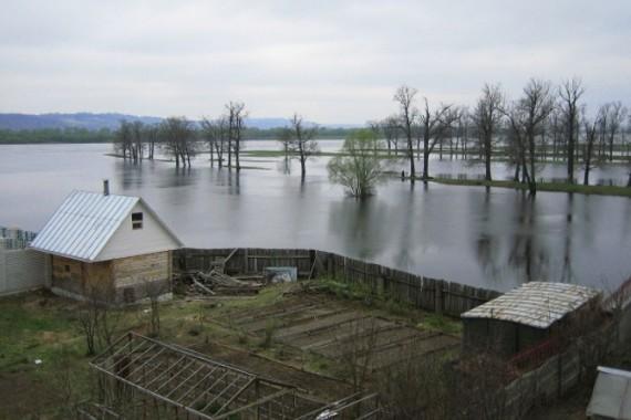 ВДесне вчерте Брянска засутки резко поднялась вода