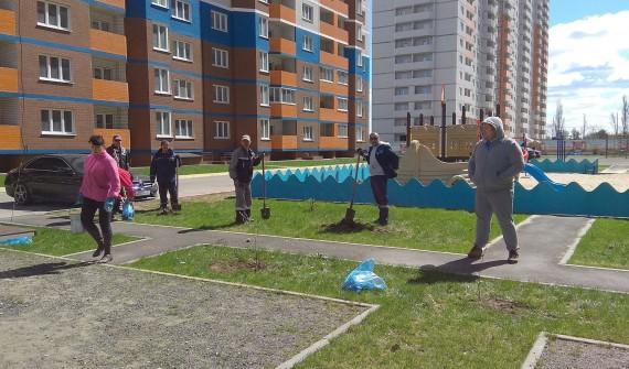 Придомовые территории города Брянска присоединились какции «Посади дерево»